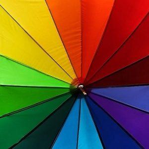 ¿Qué significan los colores?