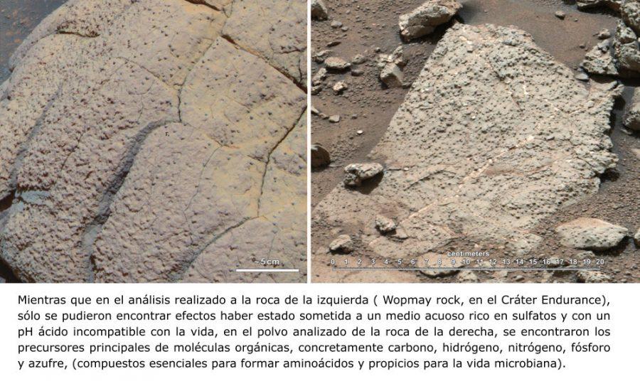 Mientras que en el análisis realizado a la roca de la izquierda ( Wopmay rock, en el Cráter Endurance), sólo se pudieron encontrar efectos haber estado sometida a un medio acuoso rico en sulfatos y con un pH ácido incompatible con la vida, en el polvo analizado de la roca de la derecha, se encontraron los precursores principales de moléculas orgánicas, concretamente carbono, hidrógeno, nitrógeno, fósforo y azufre, (compuestos esenciales para formar aminoácidos y propicios para la vida microbiana).