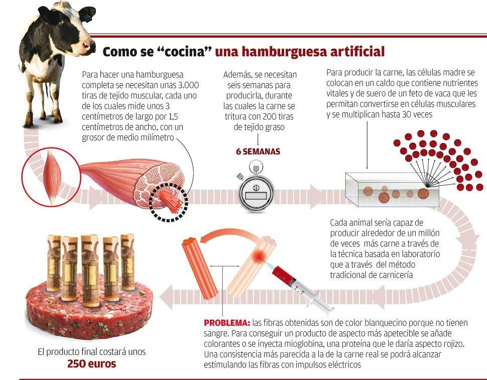 Interesante gráfico de El Faro de Vigo publicado en 2012 cuando se dio a conocer el proyecto.
