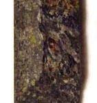 Kimberlite Core Sample 141x150, Planeta Incógnito