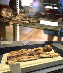 Comparativa entre una de las Diapositivas presentadas y la momia del Smithsonian https://www.tripadvisor.com/LocationPhotoDirectLink-g28970-d104867-i98472116-Smithsonian_National_Museum_of_Natural_History-Washington_DC_District_of_Co.html