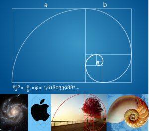 Proporción aurea se encuentra en la naturaleza, el diseño gráfico y el universo