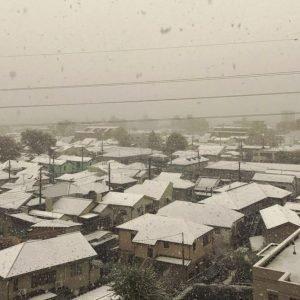 La primera Nevada en Tokio en el mes de Noviembre desde hace más de 50 años sorprende a sus habitantes.