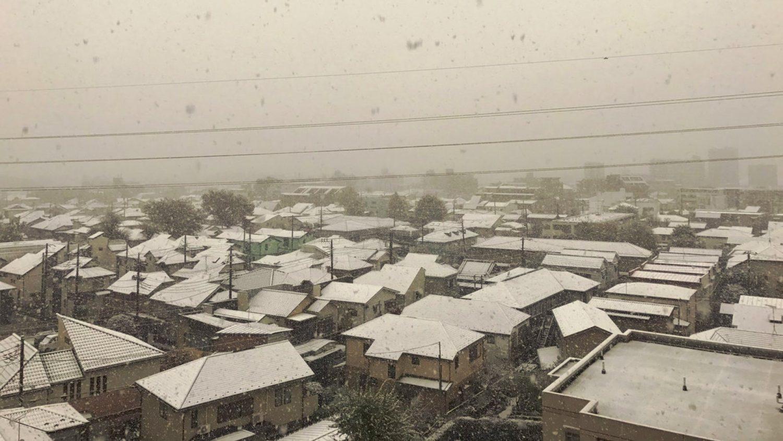 La primera Nevada en Tokio en el mes de Noviembre desde hace más de 50 años sorprende a sus habitantes. 4