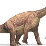 110 pisadas de Dinosaurio.  El Sendero más largo de estos reptiles está en Francia 8