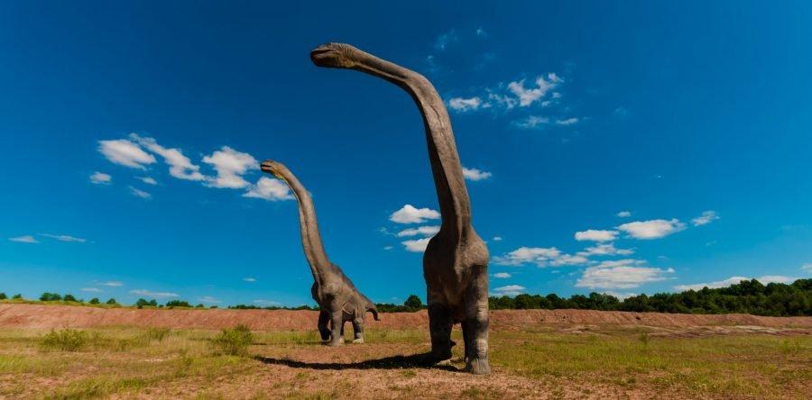 110 pisadas de Dinosaurio.  El Sendero más largo de estos reptiles está en Francia 1