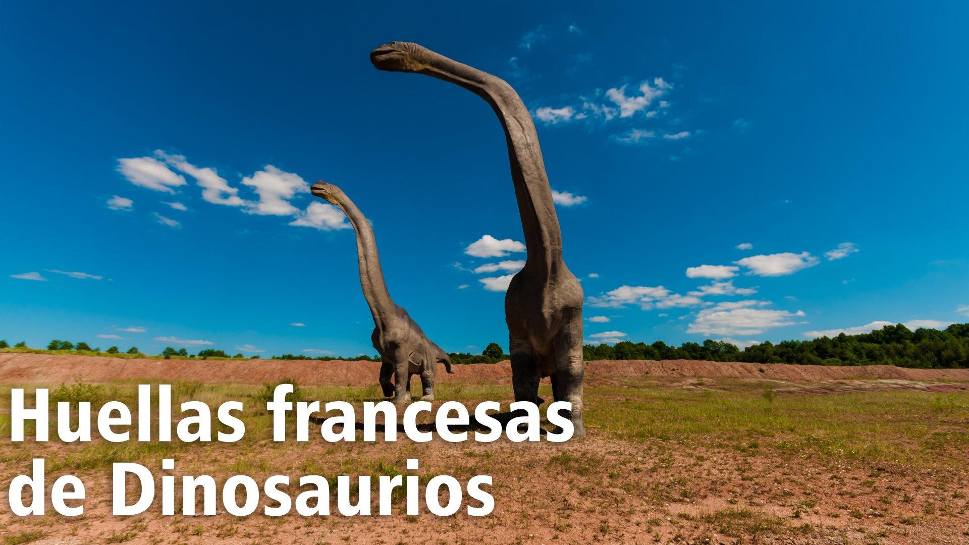 110 pisadas de Dinosaurio.  El Sendero más largo de estos reptiles está en Francia 5