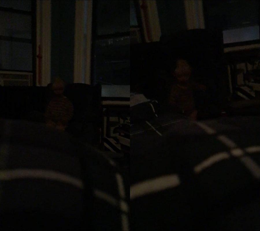 Adam Ellis y el supuesto niño fantasma Dear David ¿Historia real o Hoax? 2