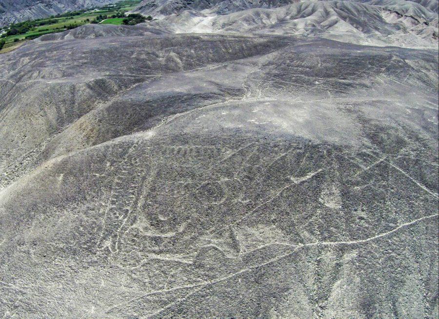 Reencuentran el geoglifo de una Orca en el desierto de Perú 2