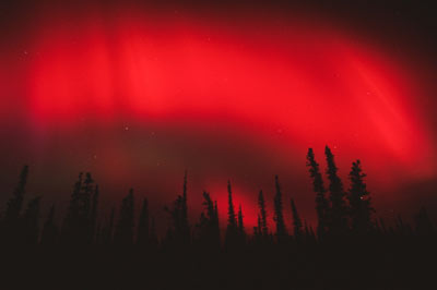 Aurora roja wikimedia