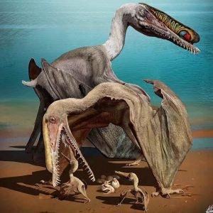 Las crias de Pterosaurio también necesitaban mimos