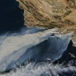 Las fotografías más impactantes de los devastadores incendios de California 1