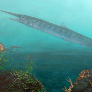 Un chaval de 10 años ayuda a los paleontólogos a descubrir un antiguo pez