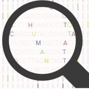 La empresa catalana que ofrece secuenciar el genoma y almacenarlo en internet