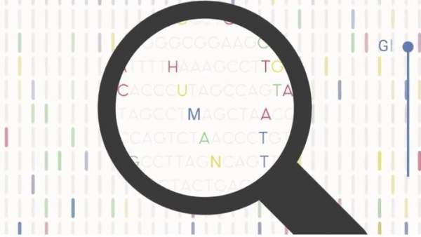 Una Empresa Catalana Ofrece Secuenciar El Genoma Y Almacenarlo En La Nube, Planeta Incógnito