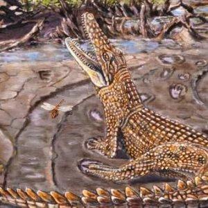Descubren dónde vivían los cocodrilos prehistóricos australianos