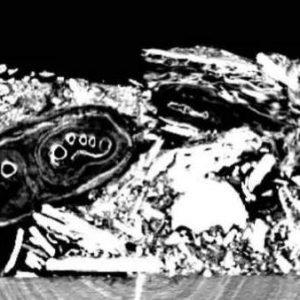 El caso de la 'momia invisible', desvelado 150 años después