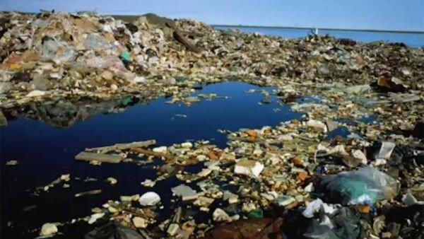 La isla de basura del Pacífico es ya tres veces más grande que Francia 7
