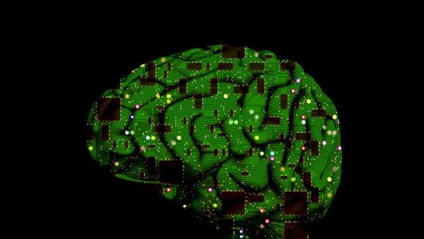 El cerebro humano se actualiza para acostumbrarse a lo inesperado