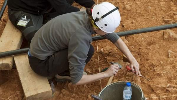 El depósito de huesos de Atapuerca podría no ser ritual, sino natural