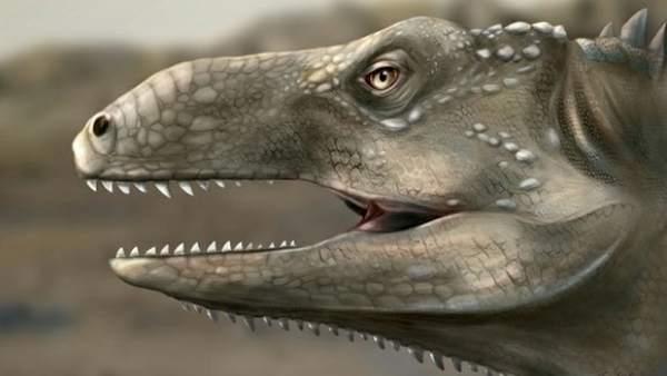 Nuevo reptil prehistórico