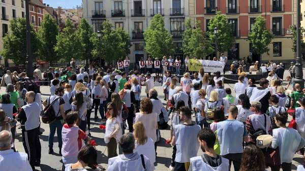 Manifestación contra la tauromaquia