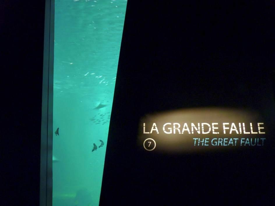 Los Tesoros Marinos De Una Isla Colombiana Emergen En Francia 1, Planeta Incógnito