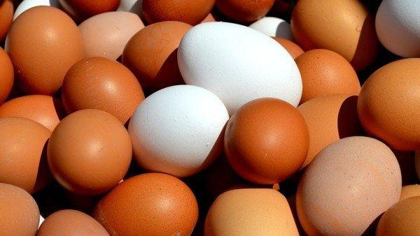 ¡Duda resuelta! La física cuántica responde a la incógnita de si fue antes el huevo o la gallina 3