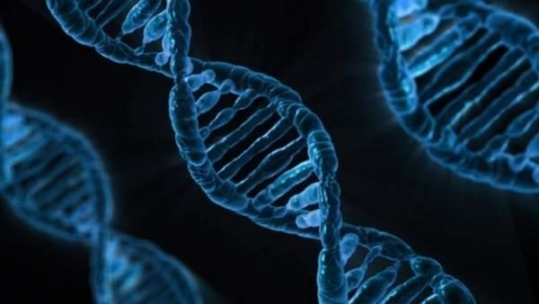Científicos chinos aseguran haber creado bebés manipulados genéticamente 6