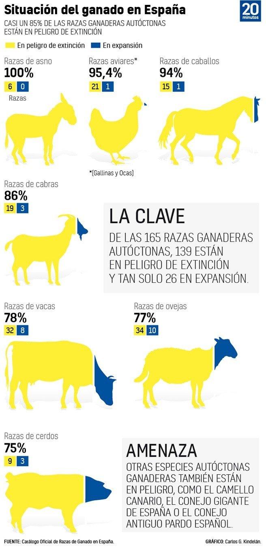 El 84% de las razas autóctonas de ganadería están en peligro de extinción 1
