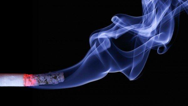 El Tabaco Afecta Mas A La Fertilidad Del Hombre De Lo Que Se Creia El Adn Se Rompe Y Provoca Abortos Y Anomalias, Planeta Incógnito