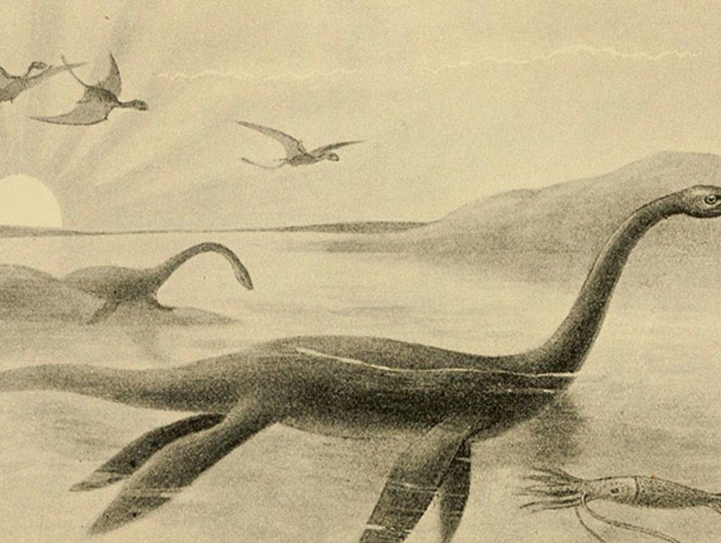 """Equipo científico dice haber identificado una teoría """"plausible"""" para explicar los avistamientos del Monstruo del Lago Ness 9"""