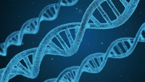 Un Estudio A Gran Escala No Encuentra Evidencia De Que La Homosexualidad Este Determinada Por Los Genes, Planeta Incógnito