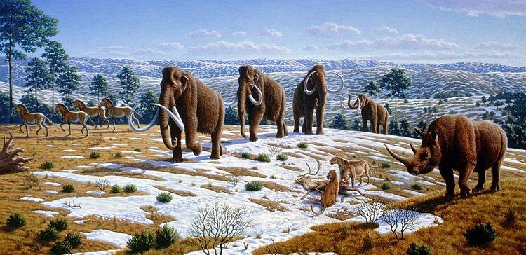 Ice Age Fauna Of Northern Spain   Mauricio Antón, Planeta Incógnito