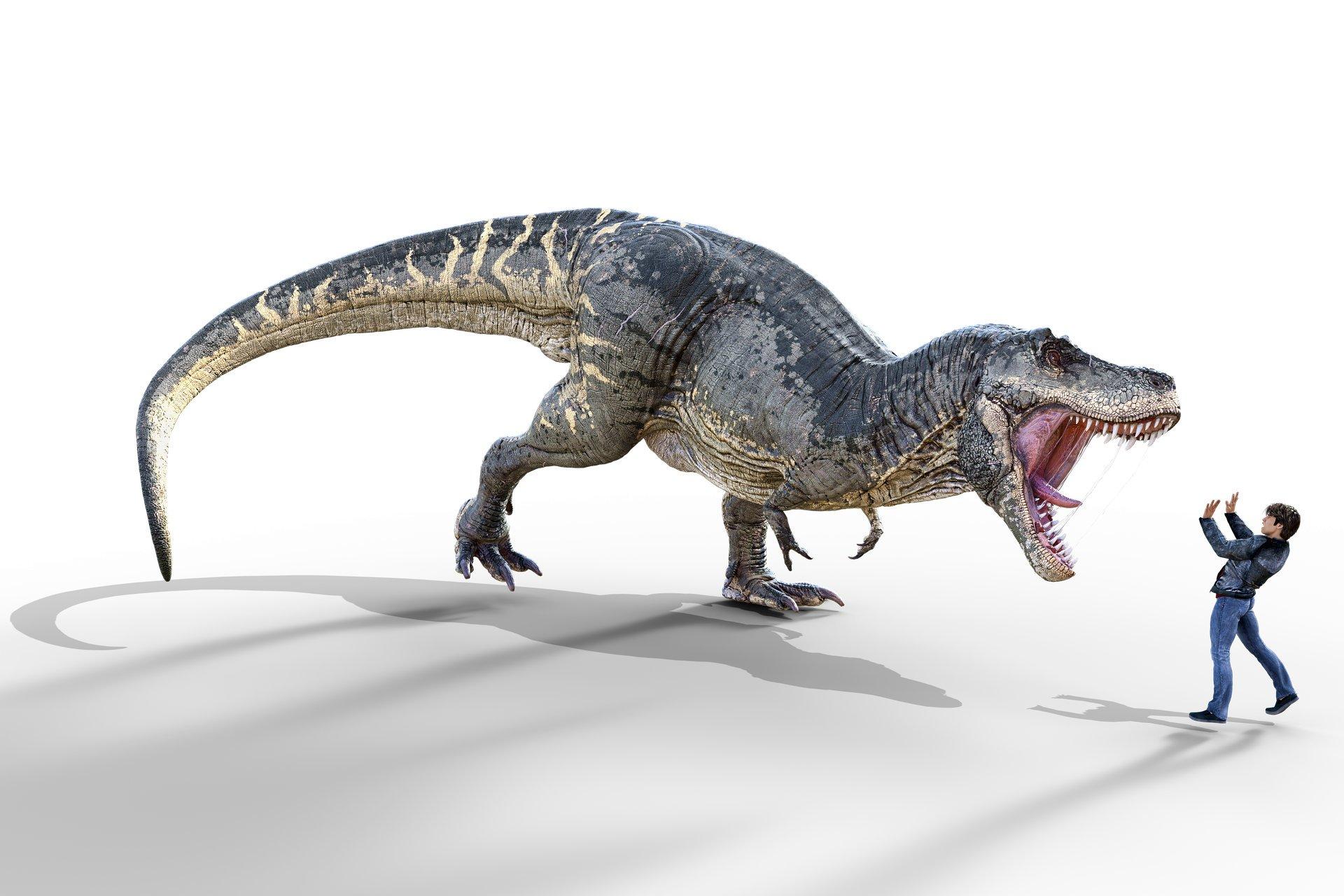 Tiranosaurio contra humano. Ilustración artística  https://www.maxpixel.net/T-Rex-Dino-Dinosaur-Extinct-Tyrannosaurus-Rex-4708418