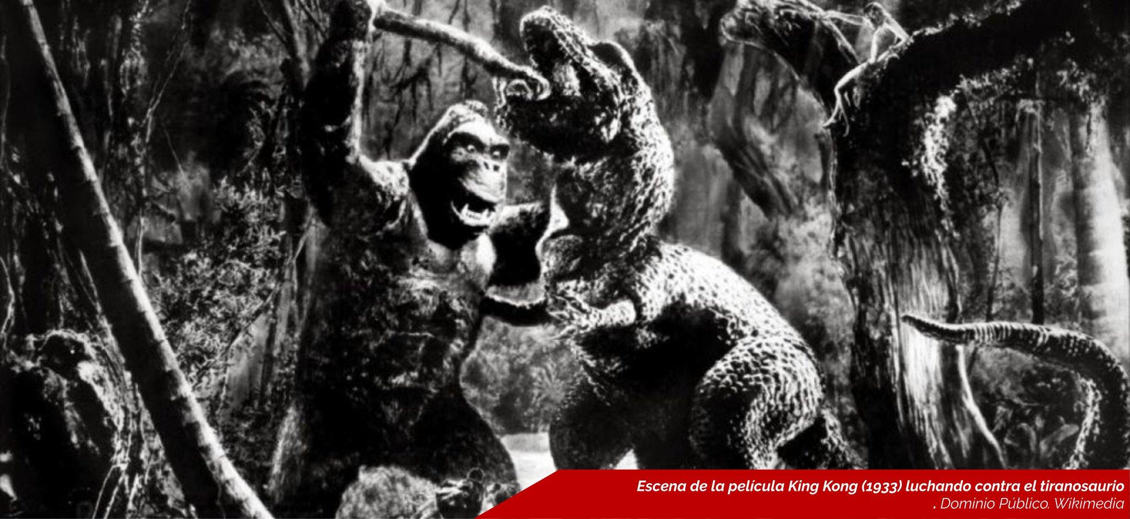Kinkong, Planeta Incógnito